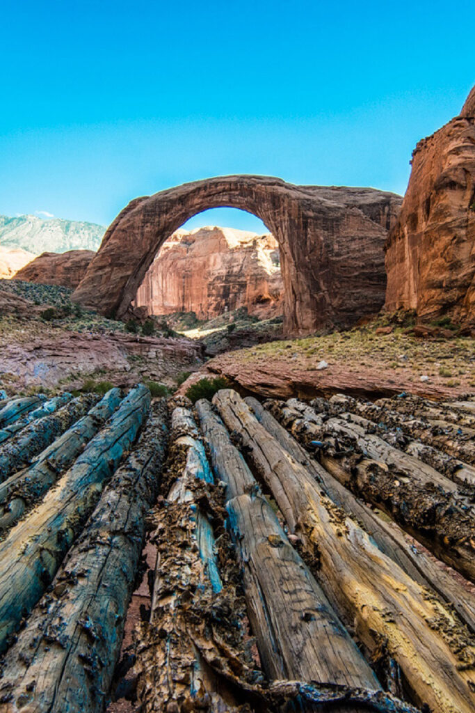 Lake Powell Boat Tours to Rainbow Bridge + Your Essential Guide to Glen Canyon National Recreation Area // Local Adventurer #usa #travel #arizona #utah #az #boating #outdoors #traveltips #lakelife #rainbowbridge