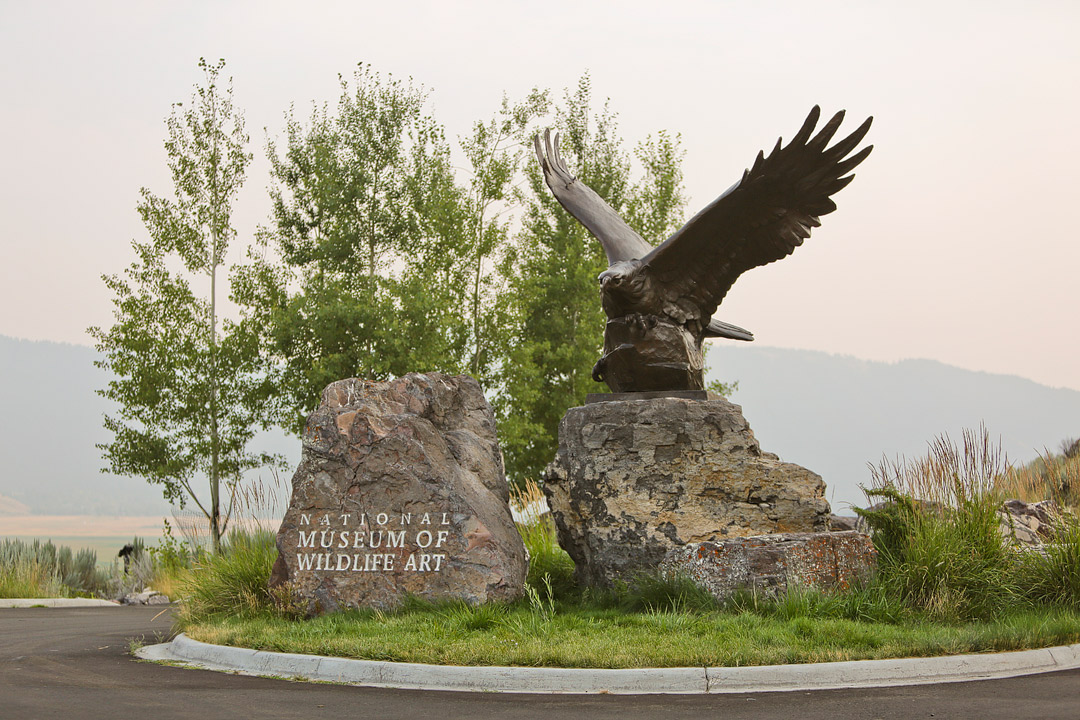 National Museum of Wildlife Art + Your Essential Guide on What to Do in Jackson Hole Wyoming // Local Adventurer