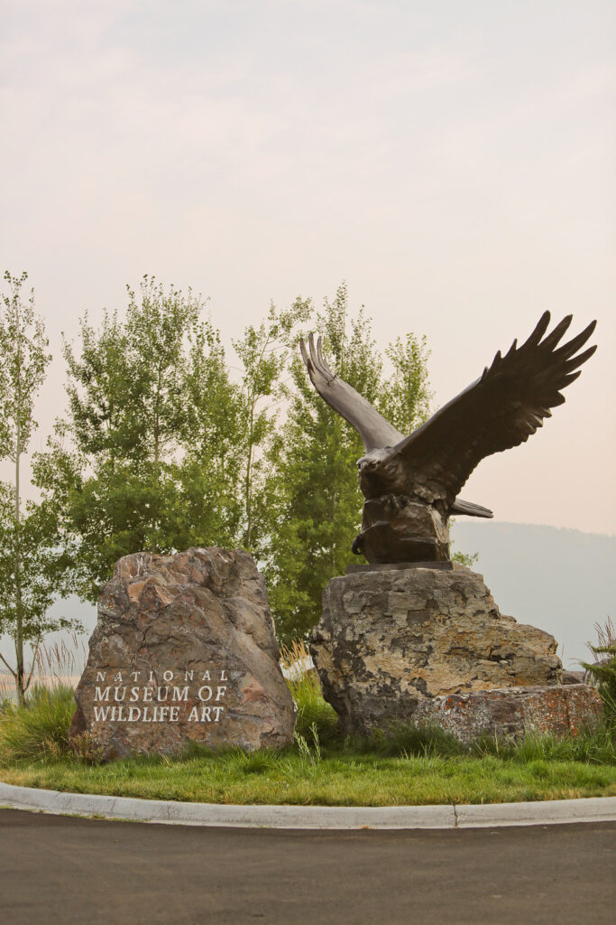 National Wildlife Museum + Your Essential Guide on What to Do in Jackson Hole Wyoming // Local Adventurer #thatswy #wyoming #wy #usa #travel #outdoors #hiking #adventure #jacksonhole #museum