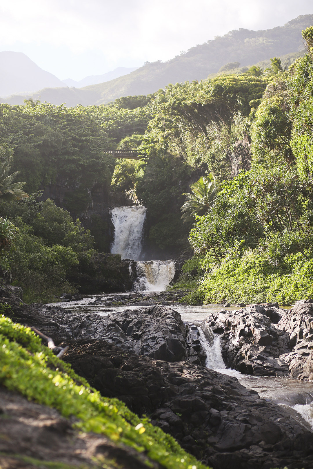 19 Incredible Road to Hana Stops You Can't Miss - Local
