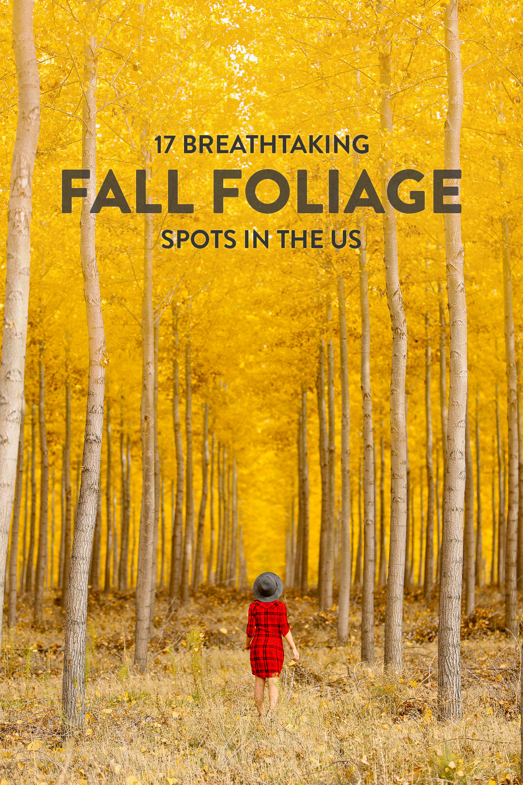 17 Places to Visit in November in USA for Fall Foliage // Local Adventurer #fall #fallfoliage #usa #travel #autumn #trees #leaves #orange