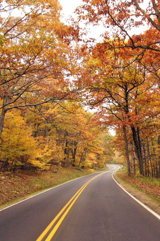 Shenandoah Fall Colors + 17 Incredible Places to Witness the Fall Season in USA // Local Adventurer #usa #travel #fall #season #autumn #foliage #colors #va #virginia