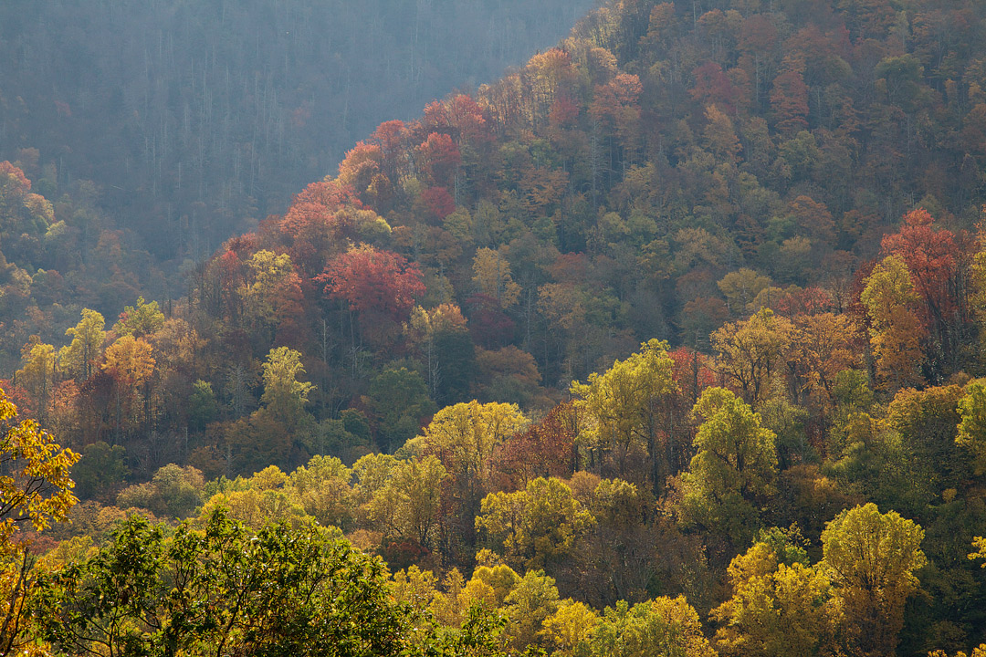 Smoky Mountains Fall Foliage + 17 Best National Parks to Visit in the Fall and US Cities with Beautiful Fall Colors // Local Adventurer #usa #travel #fall #foliage #autumn #leaves #trees #smokymountains #nationalpark #findyourpark