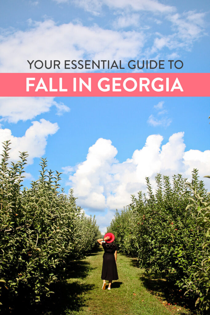 Your Essential Guide to Pumpkin Patches, Corn Mazes, Fall Festivals, and Apple Farms in Georgia // Local Adventurer #georgia #fall #autumn #usa #travel