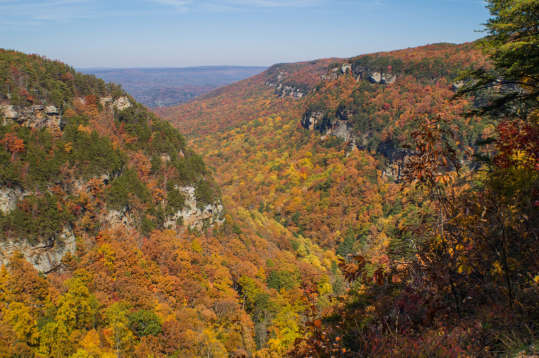 Cloudland Canyon State Park + 13 Amazing Places to See Fall Foliage and Fall Festivals in Georgia // Local Adventurer