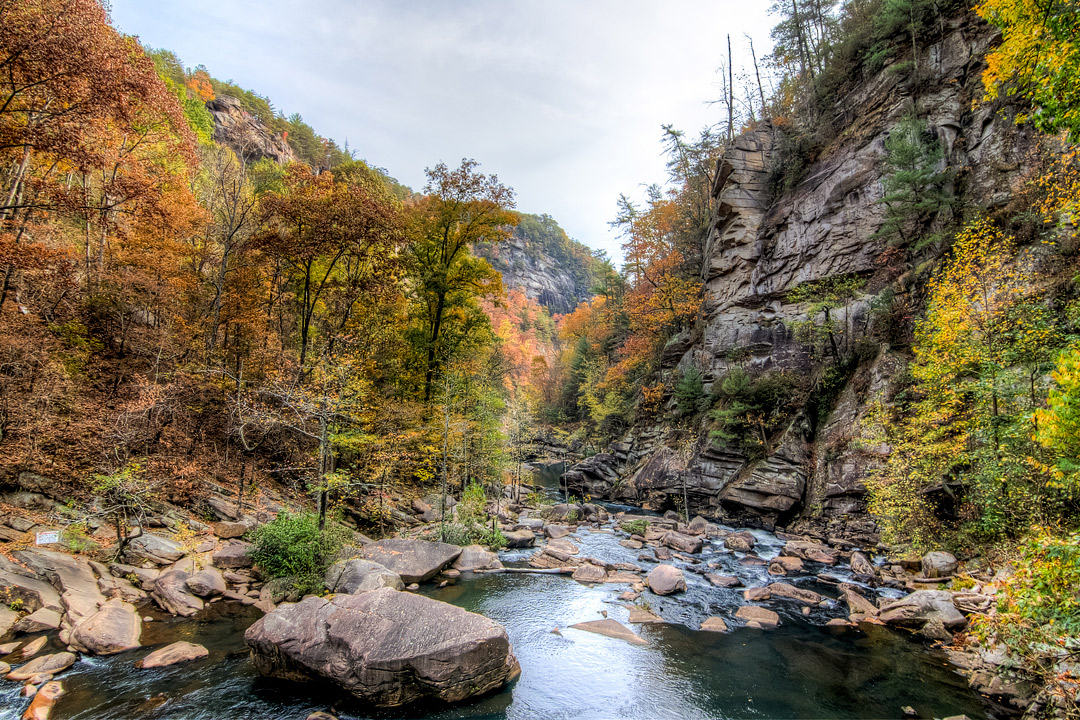 Tallulah Gorge State Park + 13 Autumn Activities and Fall Festivals in Georgia // Local Adventurer