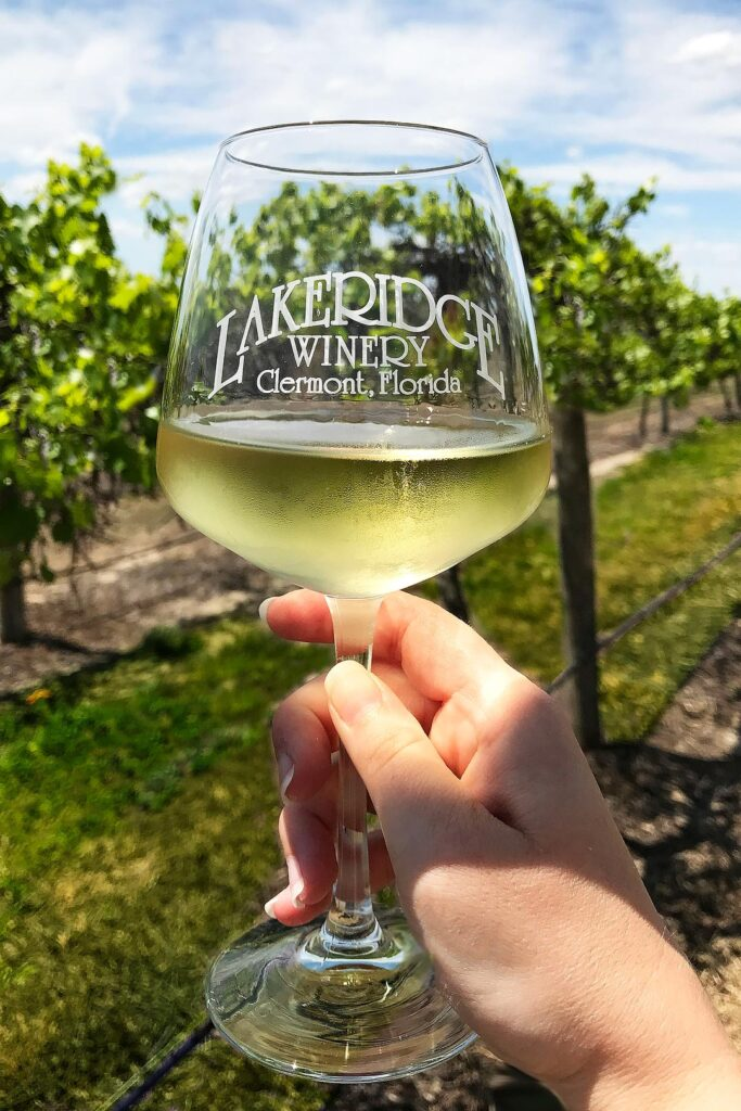 Lakeridge Winery + 25 Orlando Things to Do for Free