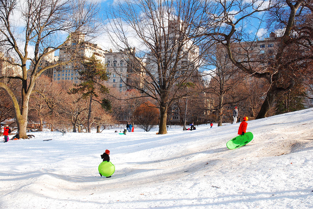 Pilgrim Hill Central Park Sledding