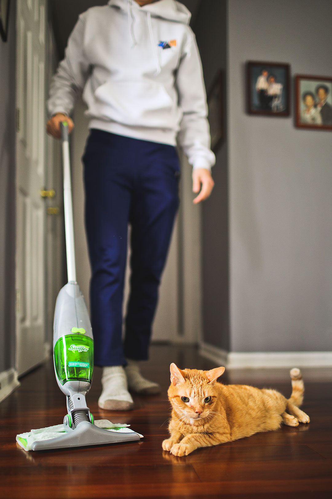 Our Cat Adoption Story + Swiffer Sweeper Refills