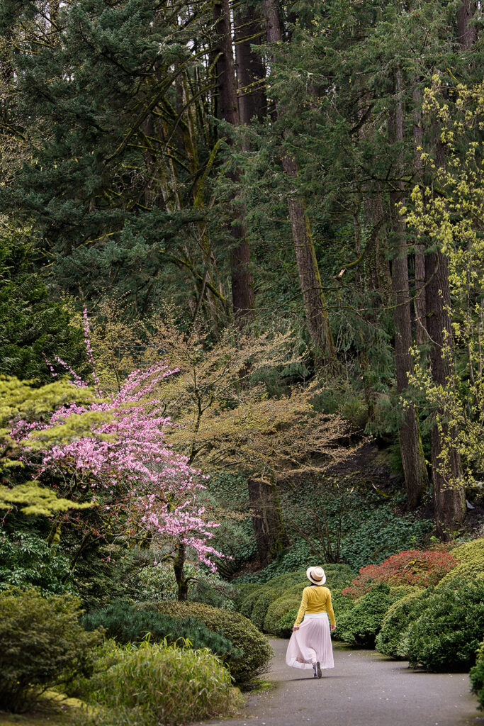 Best places to see cherry blossoms in portland oregon - Portland japanese garden admission ...