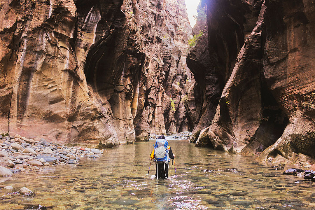 The Narrows Zion Utah National Parks