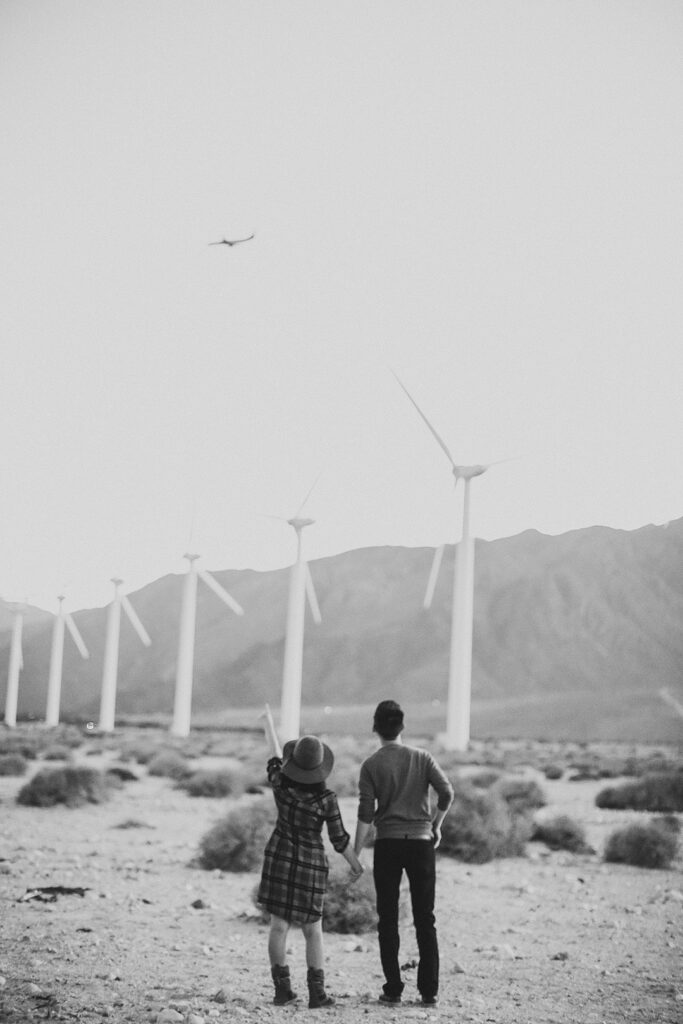 Palm Springs Wind Farm + 15 Palm Springs Attractions You Can't Miss