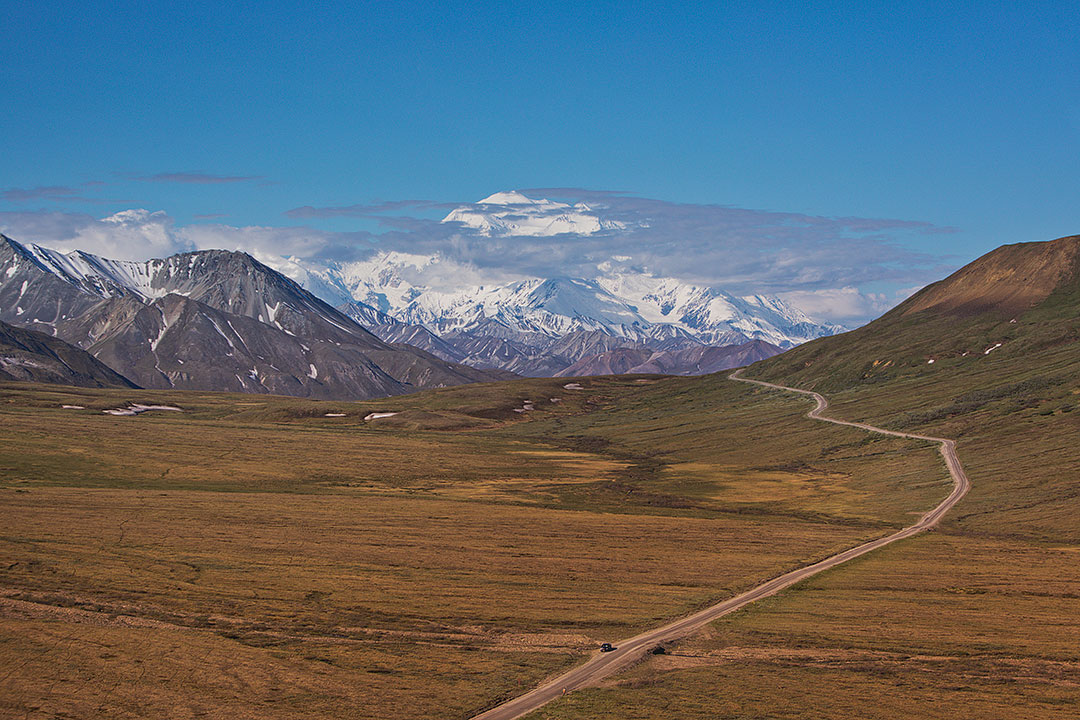 Best Things to Do in Denali National Park Alaska