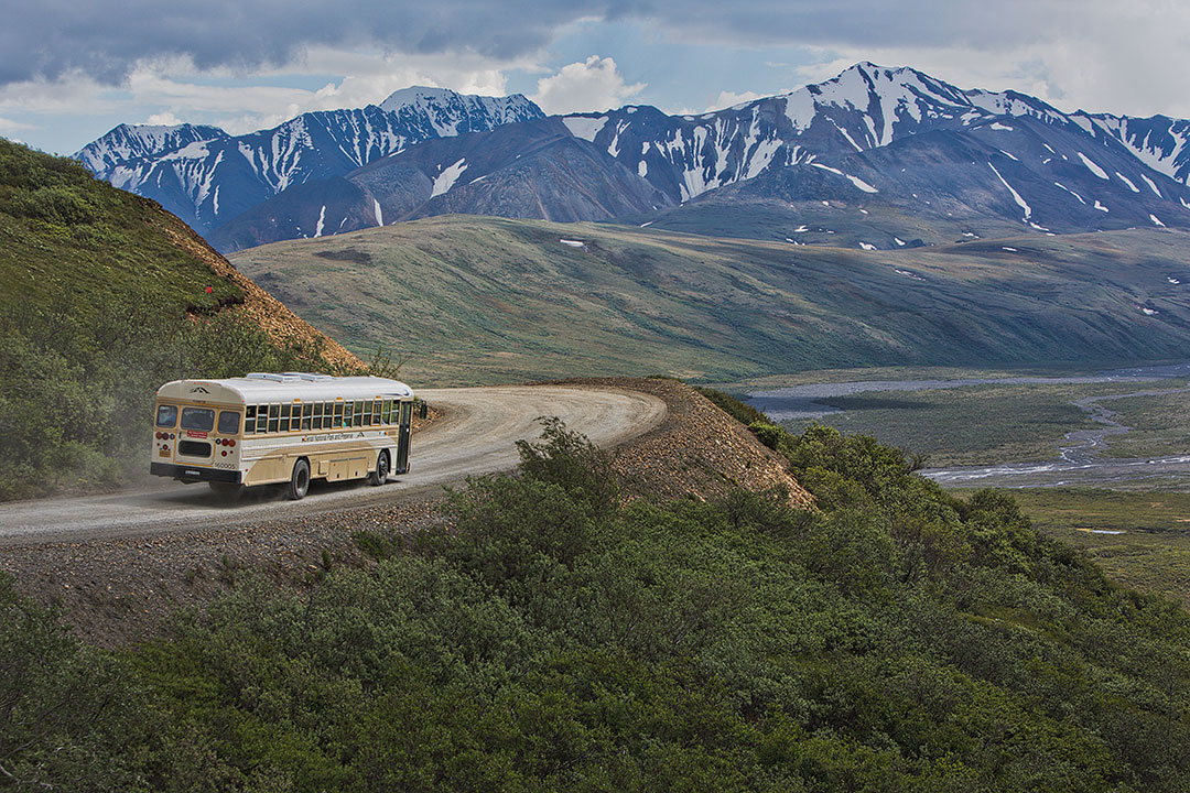 The Tundra Wilderness Tour + 17 Incredible Things to Do in Denali National Park Alaska