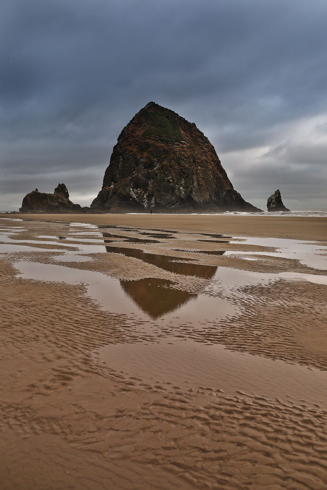 Oregon Coast Beaches + You Guide to the Best Things to Do on the Oregon Coast