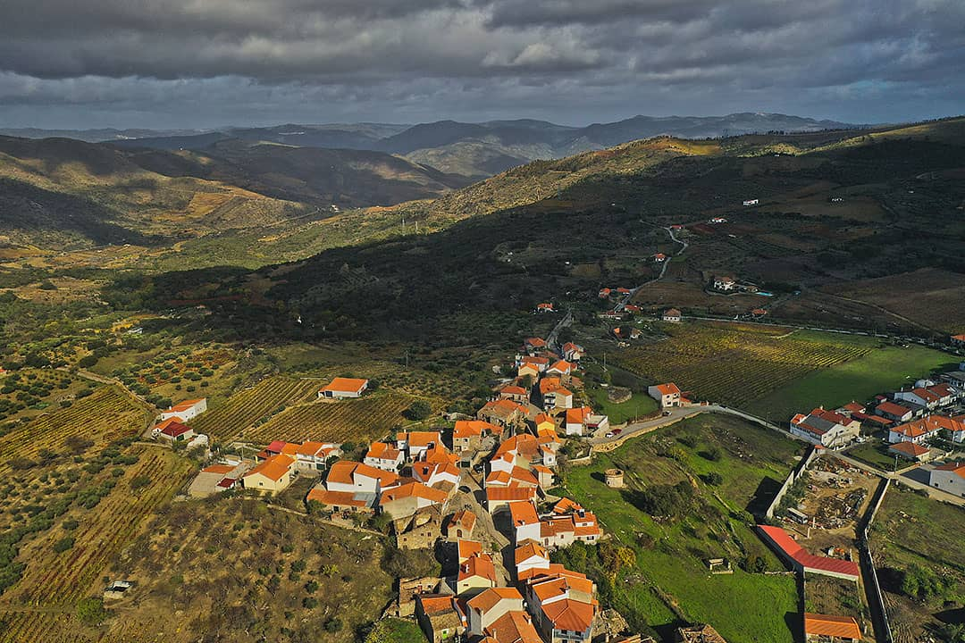 Douro Valley Wineries