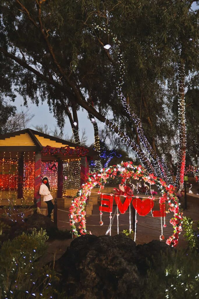 ethel m lights of love
