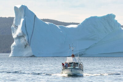 Iceberg Alley Newfoundland Vacation Guide and Tips