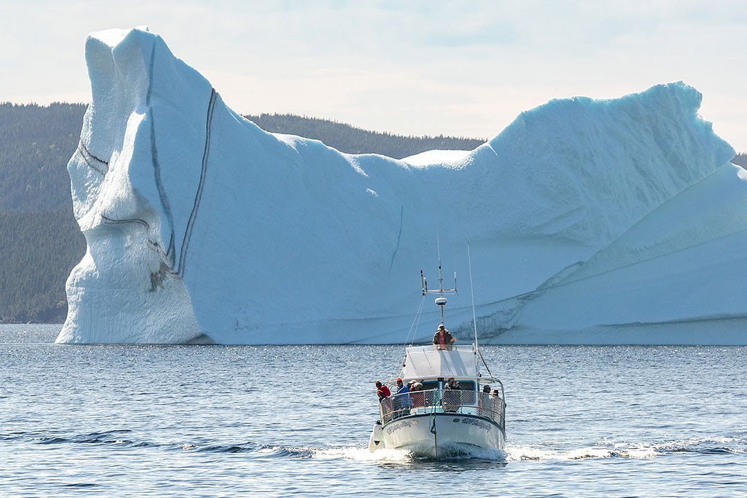 25 Unforgettable Things to Do in Newfoundland