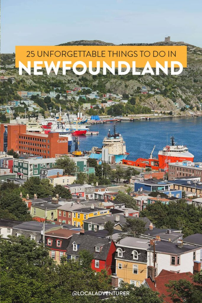 25 Unforgettable Things to Do in Newfoundland and Labrador