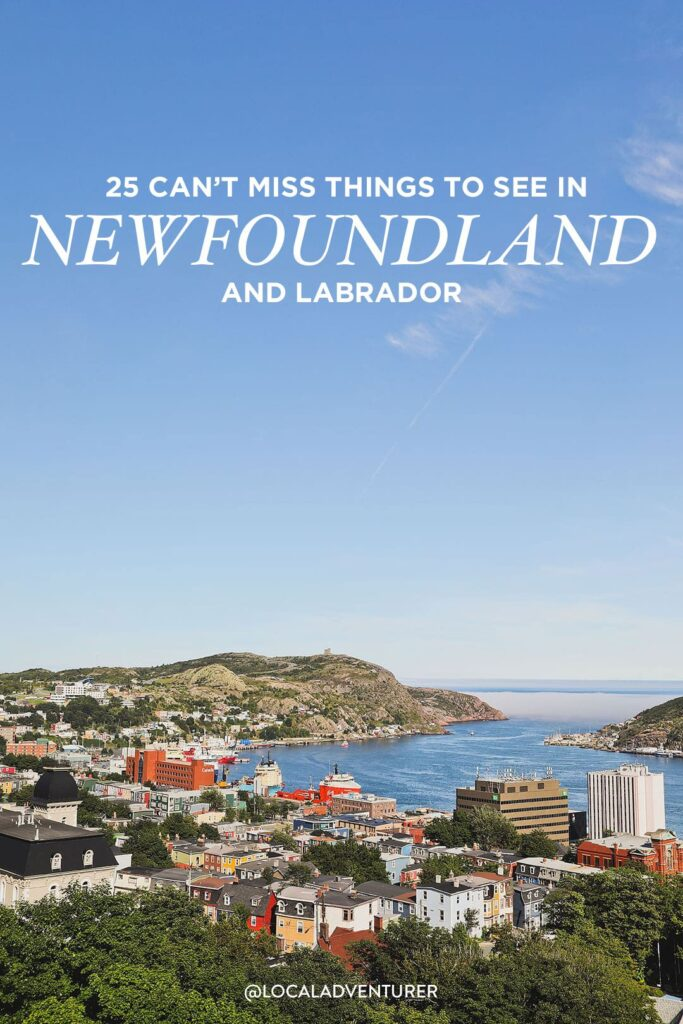What to Do in Newfoundland and Labrador
