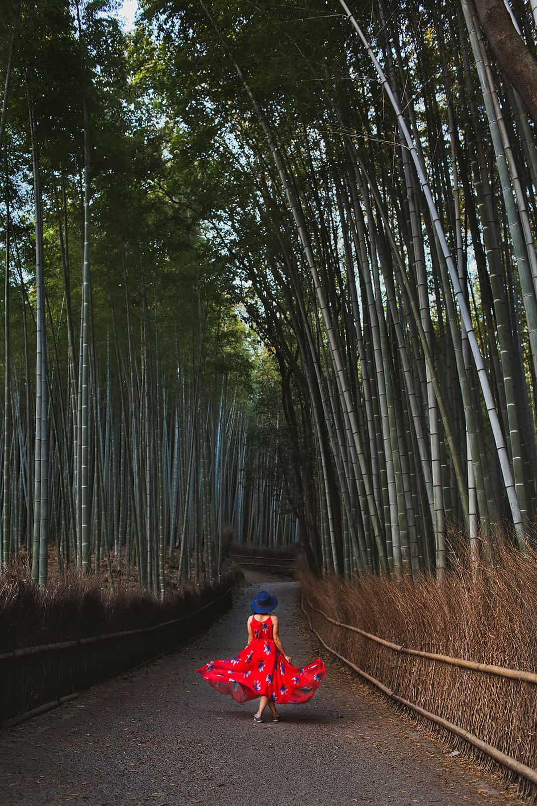 Arashiyama Bamboo Grove + 15 Amazing Things to Do in Kyoto for First Timers