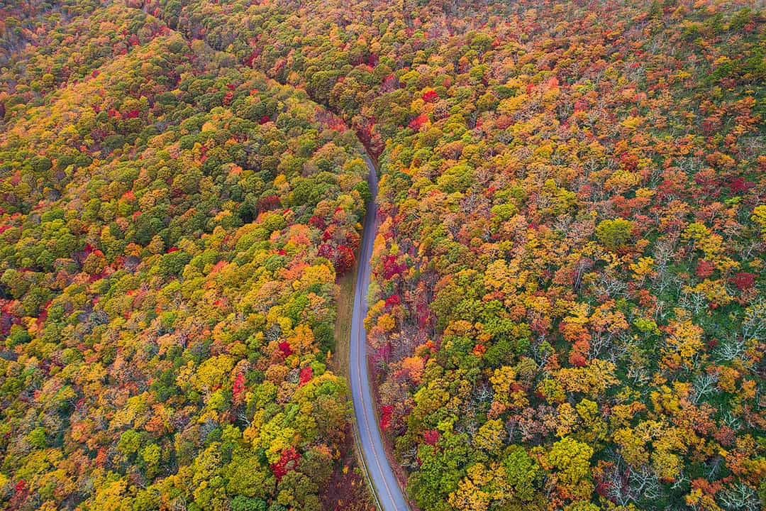 Blue Ridge Parkway Asheville NC + 15 Best Weekend Trips from Atlanta GA