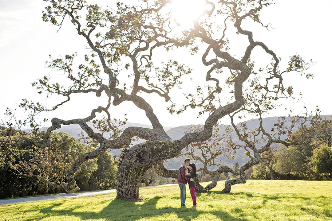 Carmel + 17 Most Romantic Places in the US