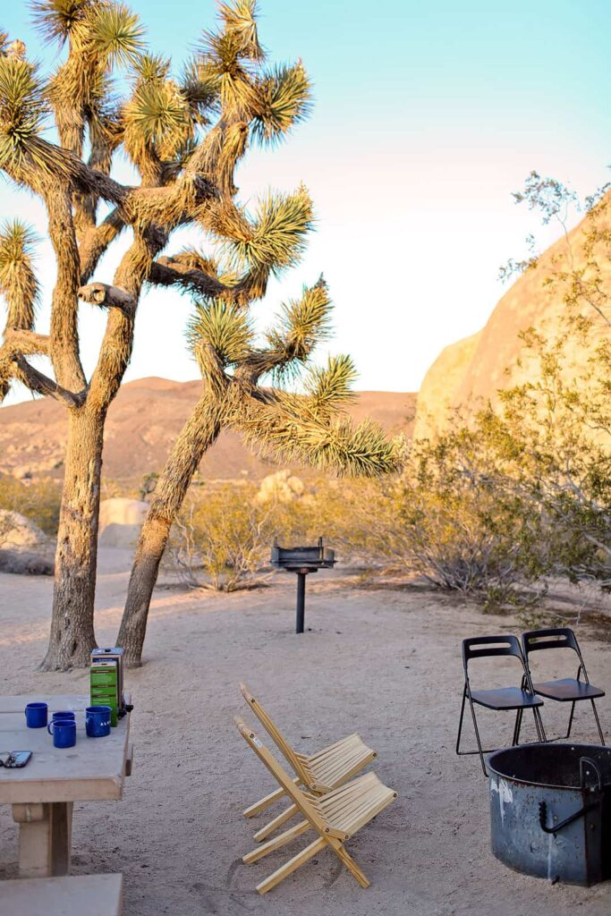 Belle Campground Joshua Tree National Park