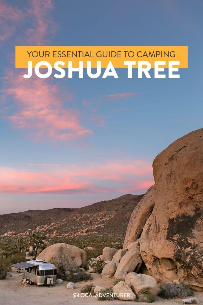 Best Campground in Joshua Tree