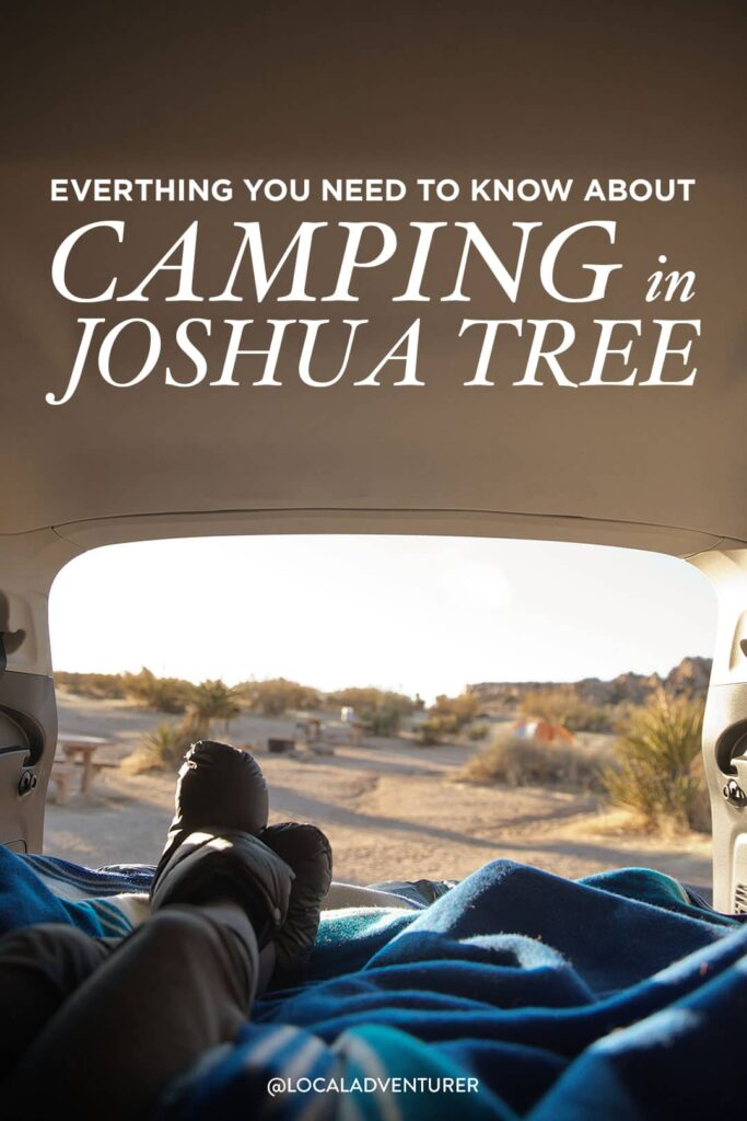 Best Joshua Tree Camping