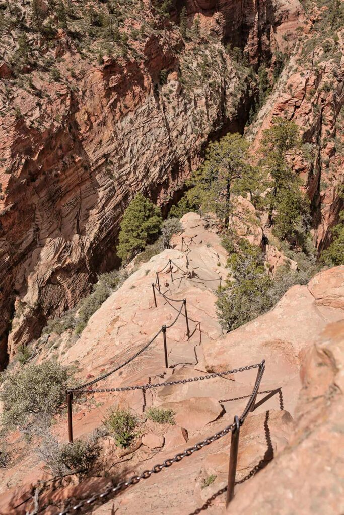 Hike Angels Landing - The Steep Chain Section + 15 Incredible Things to Do in Zion National Park