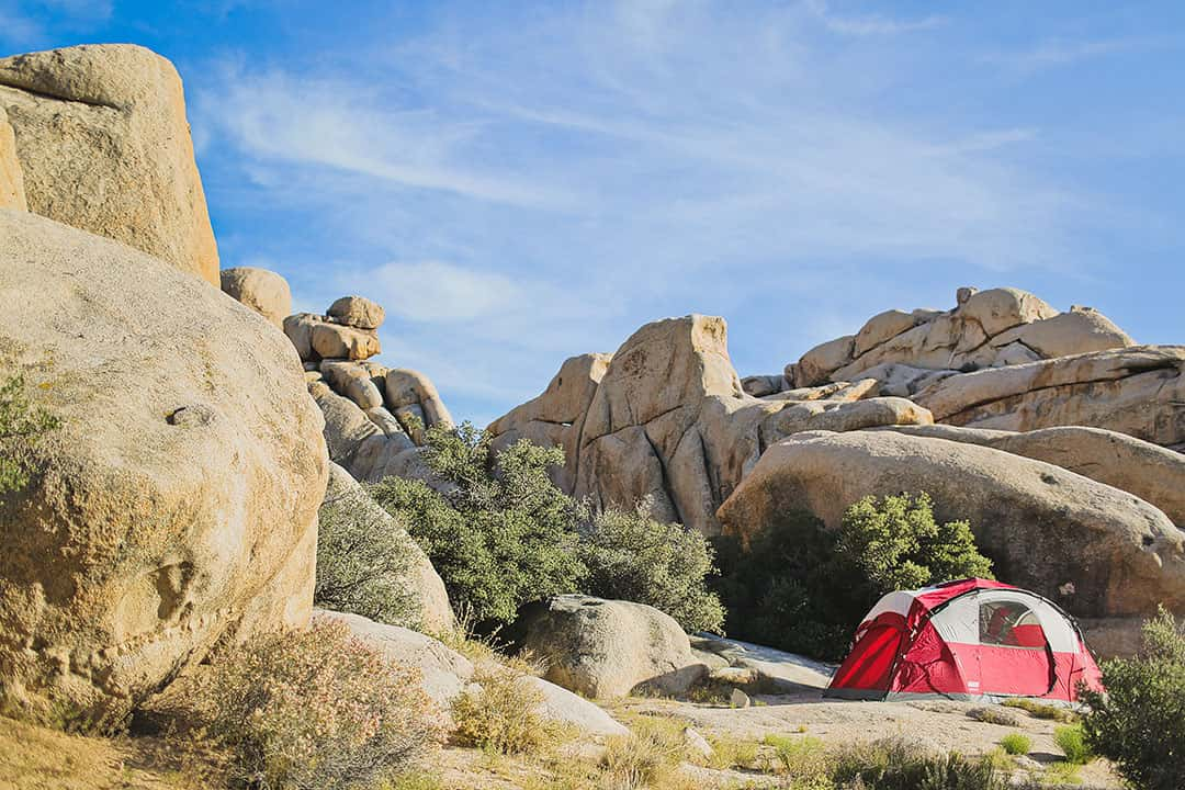 Joshua Tree Campgrounds