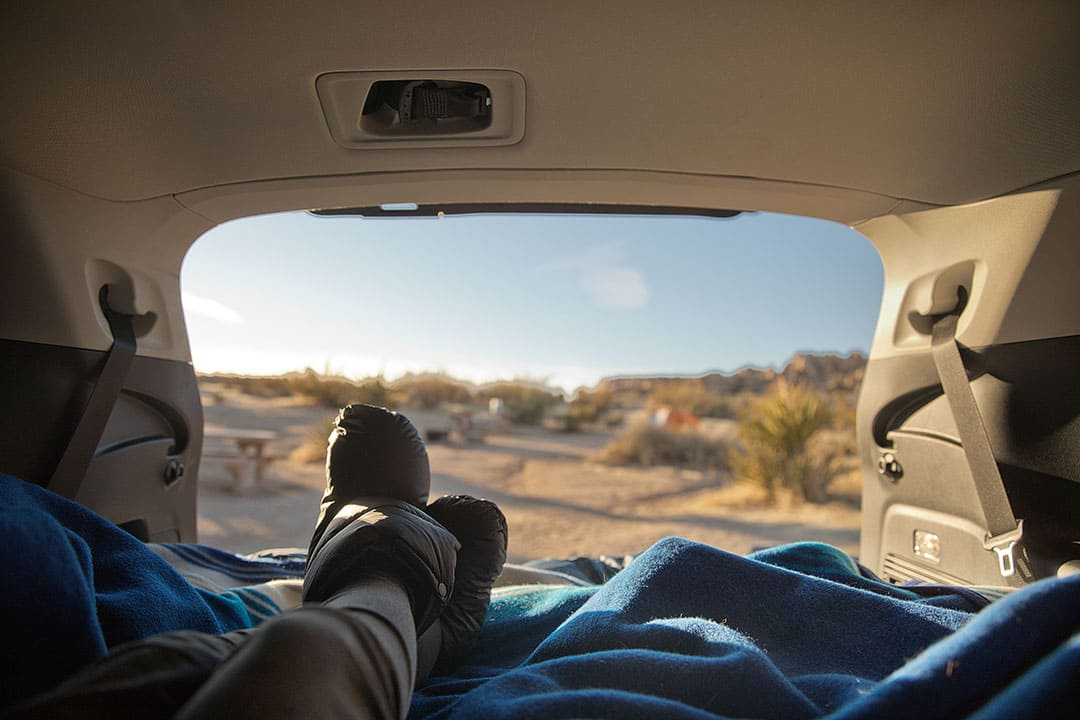 Joshua Tree Camping – What You Need to Know