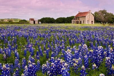 Bluebonnet House Marble Falls + 15 Best Day Trips from Austin TX to Take Next