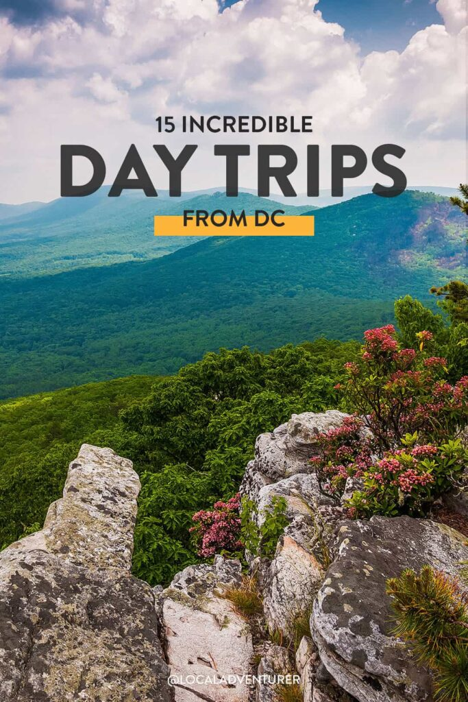 15+ Best Day Trips from DC