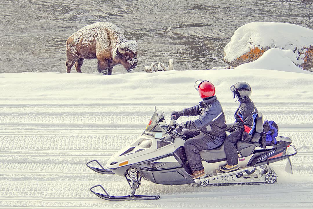 Yellowstone Snowmobile Lottery + 11 Most Difficult National Park Lotteries // Local Adventurer