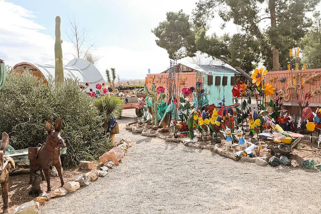 Cactus Joe's Blue Diamond Nursery