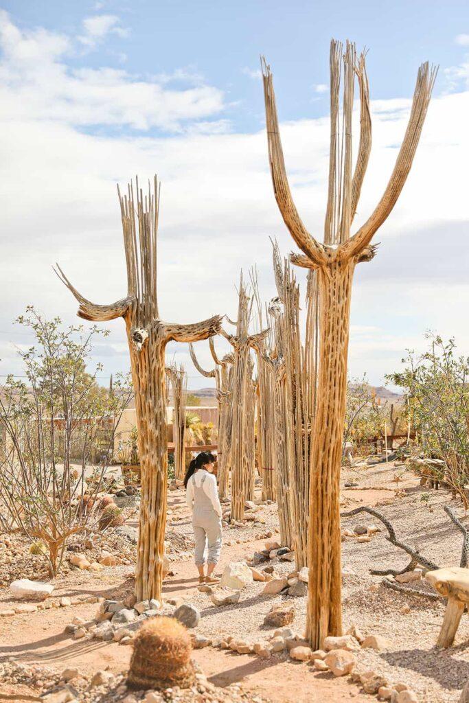 Cactus Joes Las Vegas