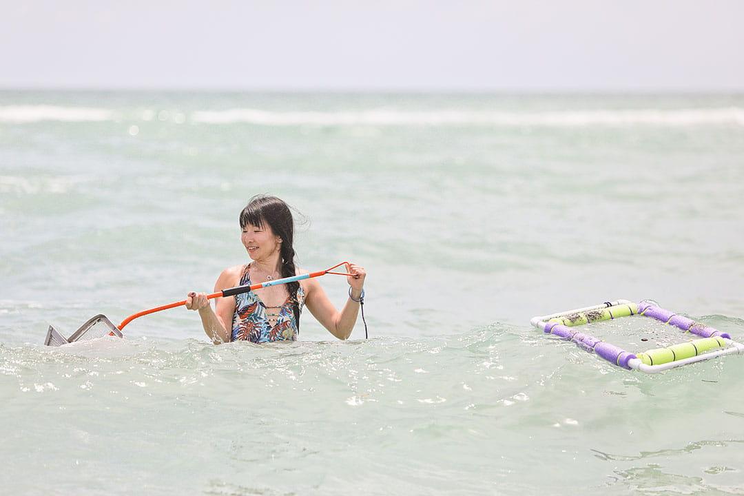 venice best beach in florida for sharks teeth