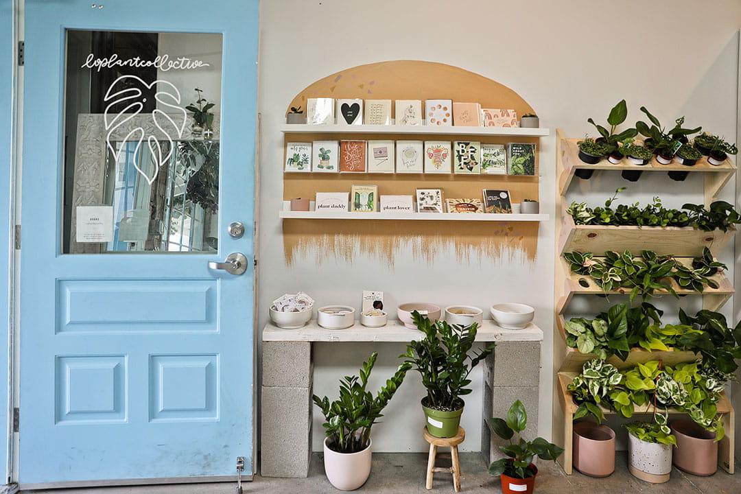plant shop las vegas